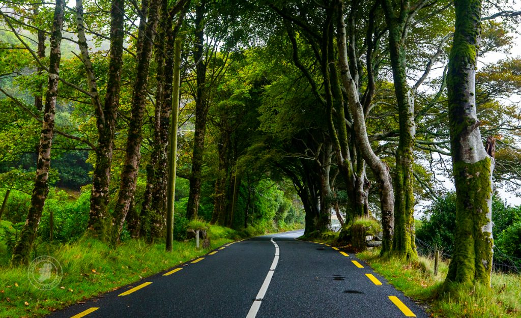 Many scenic roads will lead us to photography locations.